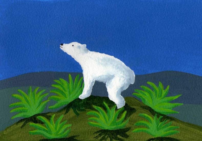 El oso tequilero - internet