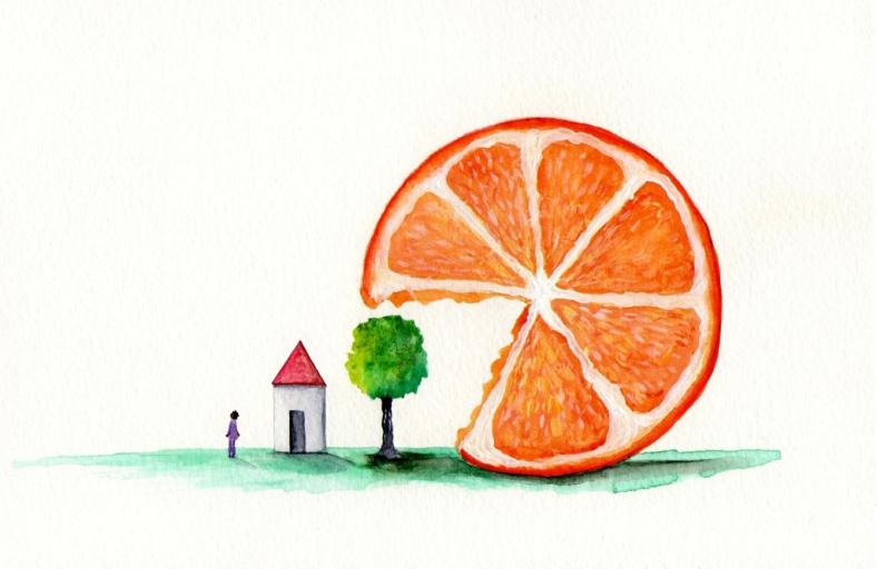 Los malísimos Ciudadanos naranjas - internet