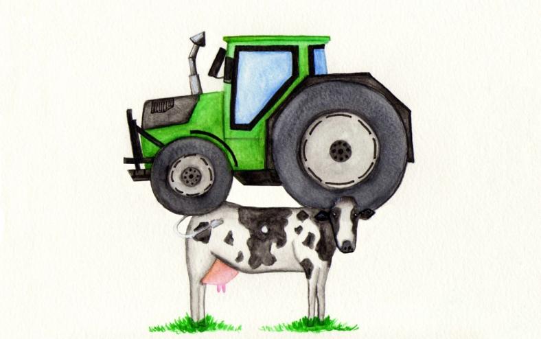 Y las vacas... - internet